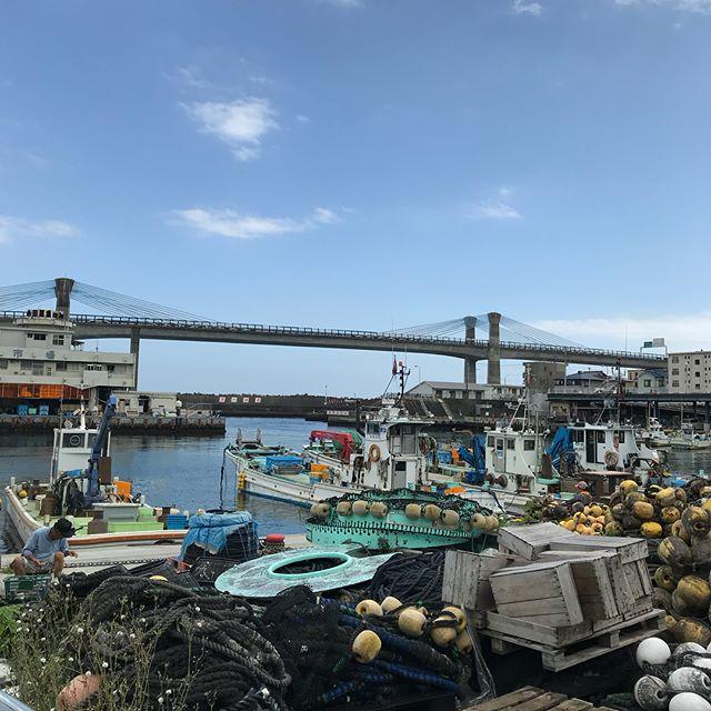 上の湯から車で20〜30分の所に早川漁港があります!潮の香りと新鮮で美味しい海の幸が豊富です!小田原〜箱根〜御殿場とちょっと足を伸ばすと楽しい出会いがあります!因みにマグロのお刺身定食は安くて美味しい漁港の味でした!#箱根 #早川漁港 #マグロのお刺身定食 #hakone  #hakone_enjoy  #箱根っていいよね  #小田原  #海の幸  #箱根上の湯  #スイッチバックの宿