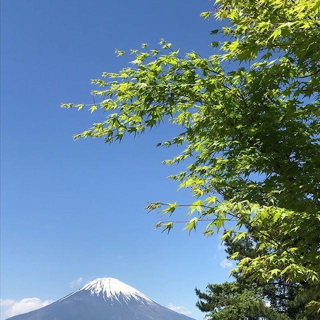 上の湯から車で20分程の乙女峠からは裾野を広げた富士山が見れます!やはり日本一の山は雄大です!#箱根っていいよね #乙女峠 #大平台温泉 #富士山 #hakone  #hakone_enjoy  #mtfuji  # #箱根上の湯