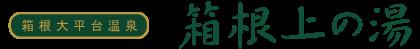 箱根大平台温泉 箱根上の湯